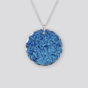Solar cell, Micrograph Necklace Circle Charm