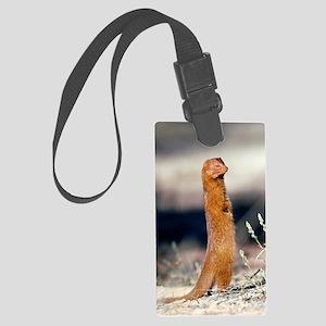 Slender mongoose Large Luggage Tag