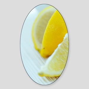 Lemon slices Sticker (Oval)