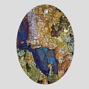Sedimentary rocks Oval Ornament