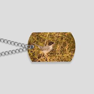 Sardinian Warbler Dog Tags