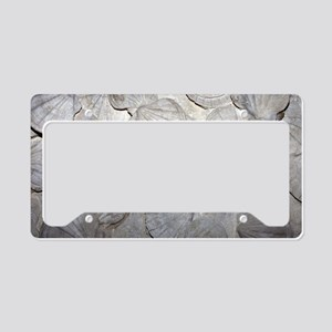 Scallop fossils License Plate Holder