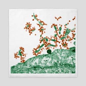 Influenza viruses, TEM Queen Duvet