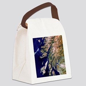True-colour satellite image of we Canvas Lunch Bag
