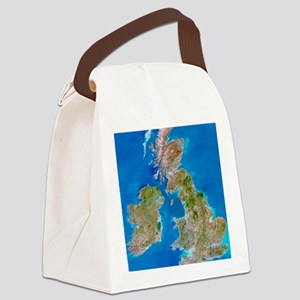 True-colour satellite image of th Canvas Lunch Bag
