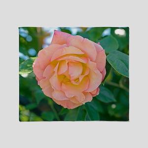 Rose (Rosa 'Della Balfour Harblend') Throw Blanket