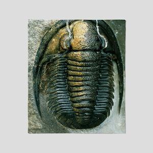 Trilobite fossil Throw Blanket