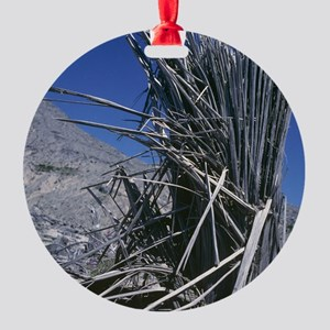 Tree destroyed by volcanic eruption Round Ornament