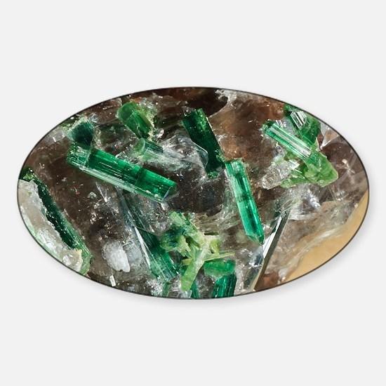 Tourmaline crystals in quartz Sticker (Oval)