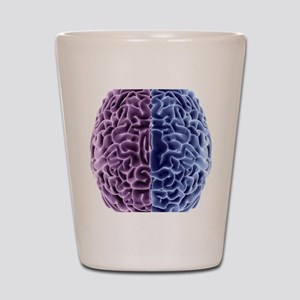 Human brain, computer artwork Shot Glass