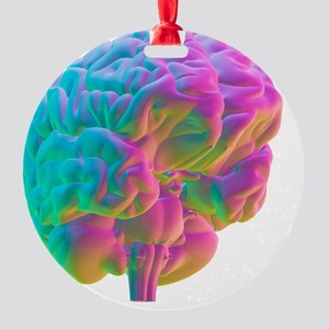 Human brain, computer artwork Round Ornament