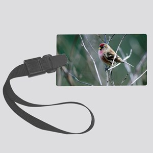 Redpoll Large Luggage Tag