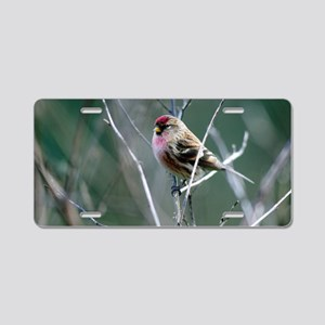 Redpoll Aluminum License Plate