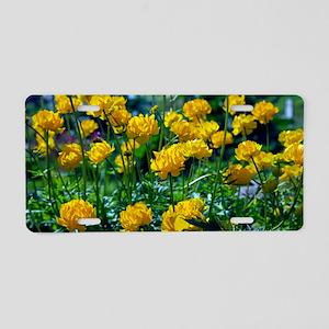 Ranunculus sp. flowers Aluminum License Plate