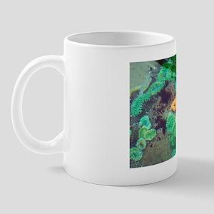 Tide pool Mug