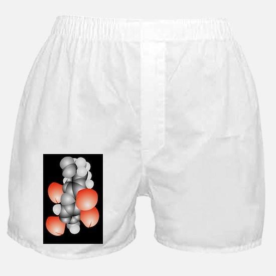 Thyroxine hormone molecule Boxer Shorts
