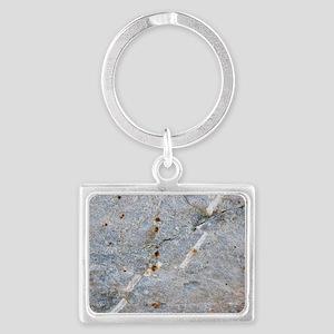 Quartz vein in granite Landscape Keychain