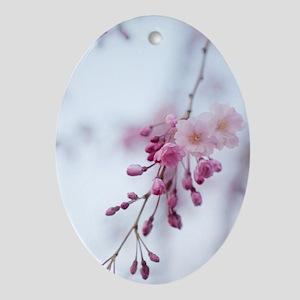 Prunus subhirtella 'Pendula' Oval Ornament
