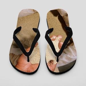 Teff Flip Flops