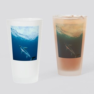 Swordfish swimming Drinking Glass