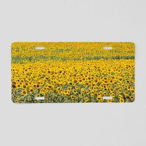 Sunflowers Aluminum License Plate