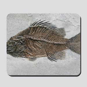 Prehistoric perch fossil Mousepad
