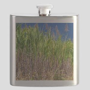 Sugar cane Flask
