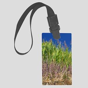 Sugar cane Large Luggage Tag