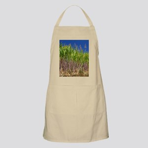 Sugar cane Apron