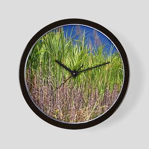 Sugar cane Wall Clock
