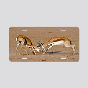 Springboks fighting Aluminum License Plate
