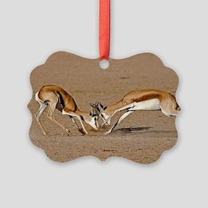 Springboks fighting Picture Ornament