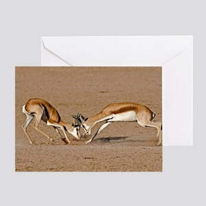 Springboks fighting Greeting Card