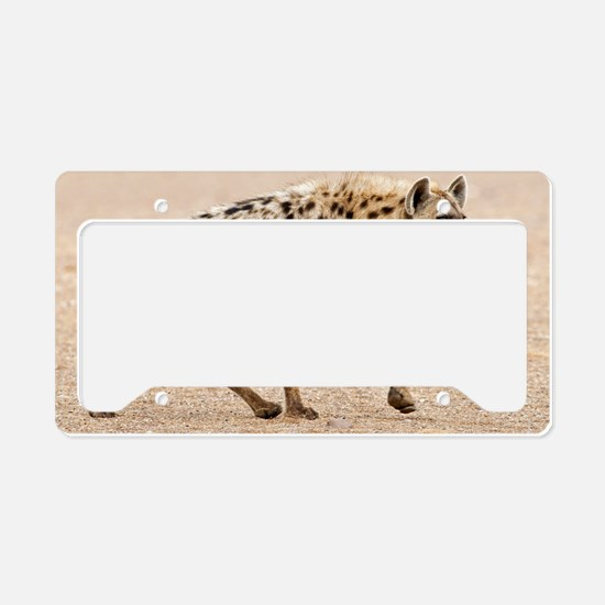 Spotted hyena License Plate Holder