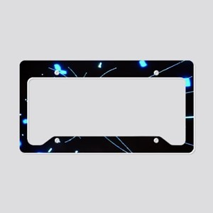 Particle physics research License Plate Holder
