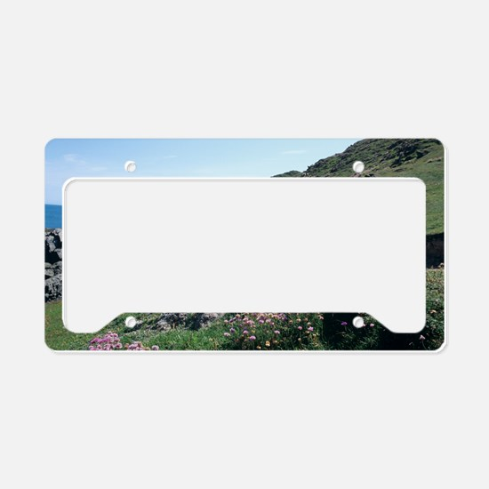 South West Coast Path, UK License Plate Holder