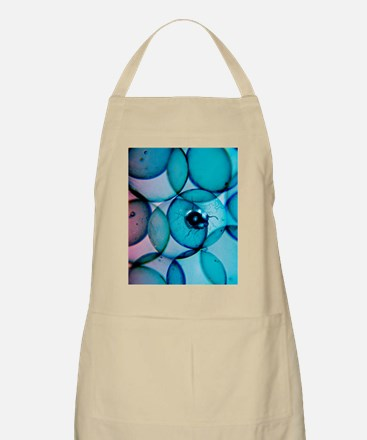 Parasite and cells Apron