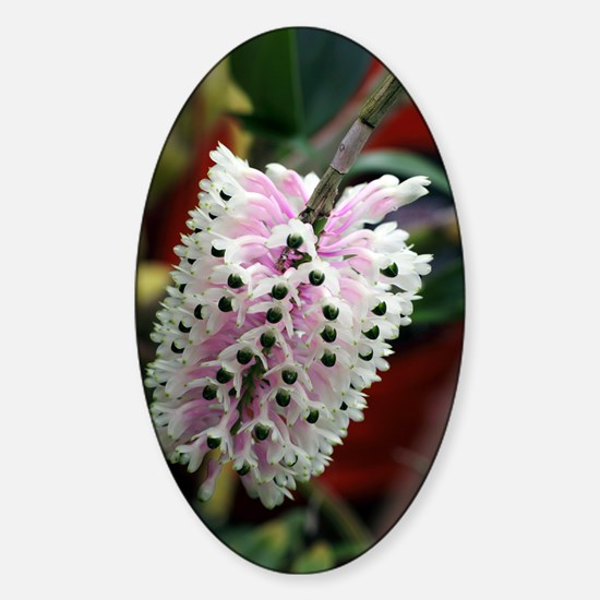 Orchid flowers Sticker (Oval)