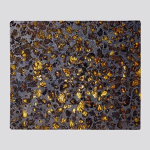 Pallasite meteorite Throw Blanket