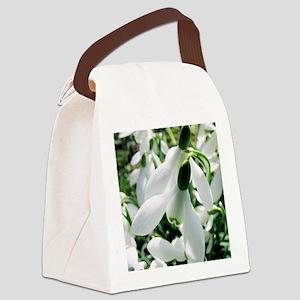 Snowdrop (Galanthus nivalis) flow Canvas Lunch Bag
