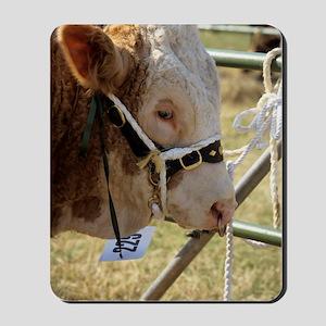 Simmental bull Mousepad