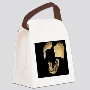 Skull bones of Homo habilis Canvas Lunch Bag