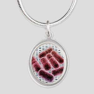 E coli bacteria, artwork Silver Oval Necklace