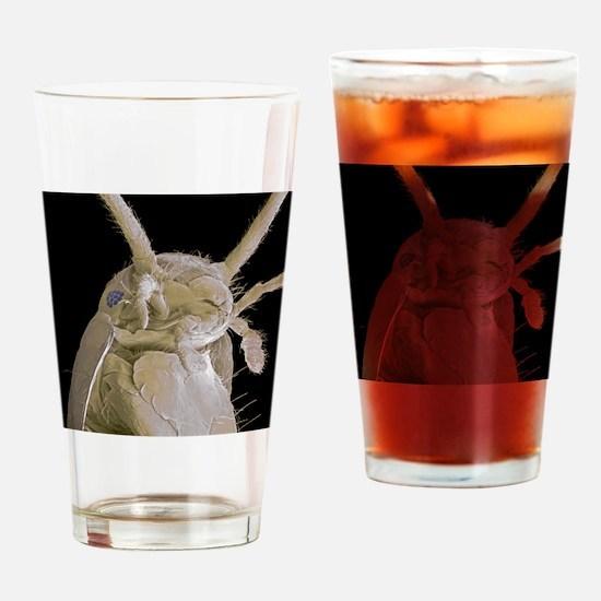 Silverfish, SEM Drinking Glass
