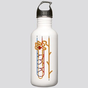 Nephron structure, art Stainless Water Bottle 1.0L