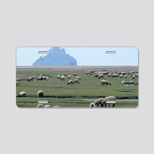 Sheep grazing Aluminum License Plate