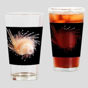 Sea slug Drinking Glass
