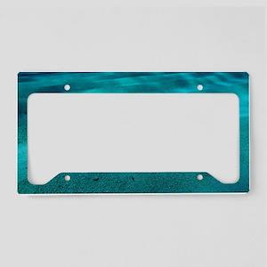 Sandy sea floor License Plate Holder