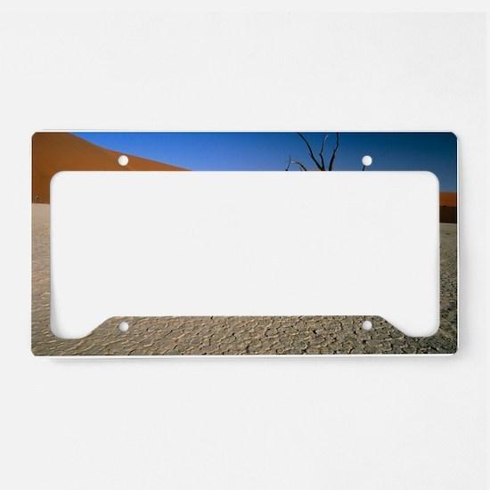 Sand dunes License Plate Holder