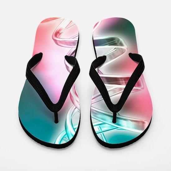 DNA molecule, artwork Flip Flops
